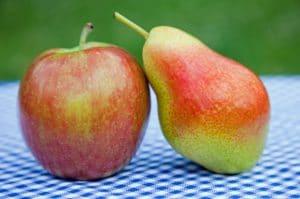 Pommes poires